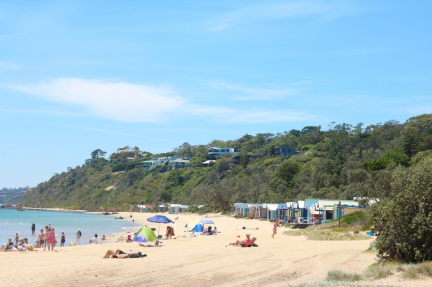mornington11